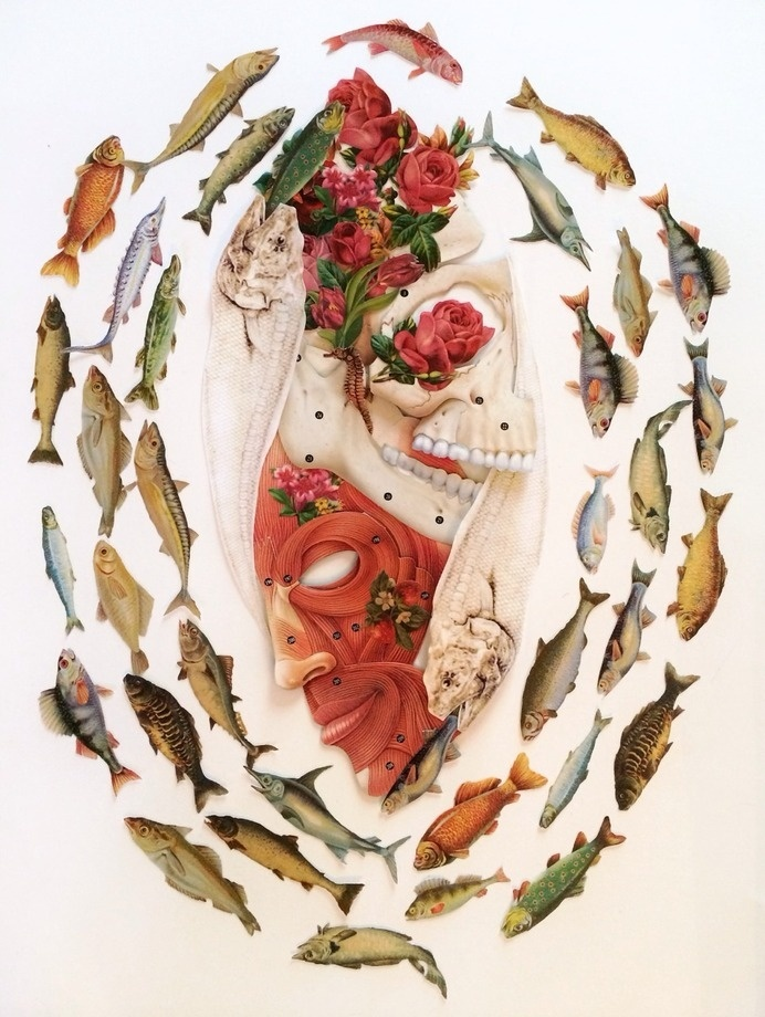 """""""pisces"""" cut paper anatomical collage art by bedelgeuse #fish #anatomy #bedelgeuse #art #collage"""