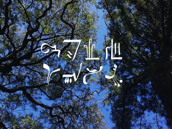 Design-Studie zur no-Font, im Auftrag für Selim Özdogan - siehe www.wmk.to ... #funktion #font #form #zdogan #heilantalt #selim #grafische #graphica #la #fucks #viva #dz #no