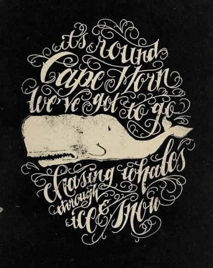 Jon Contino   Fubiz™ #whale #lettering
