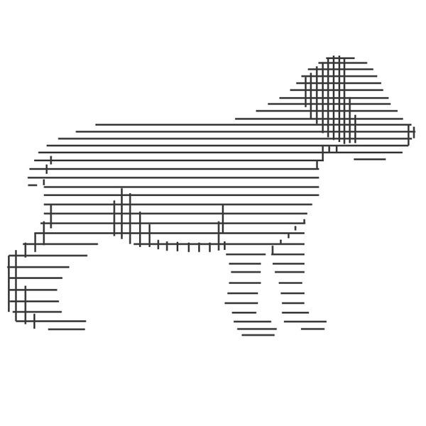 boardwell dog #boardwell #logo #branding #dog