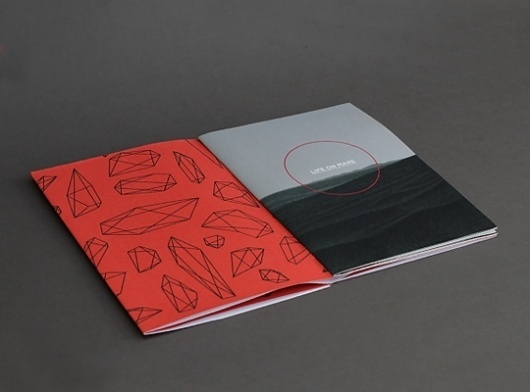 Life on Mars, Peter Borg's Portfolio #print #book