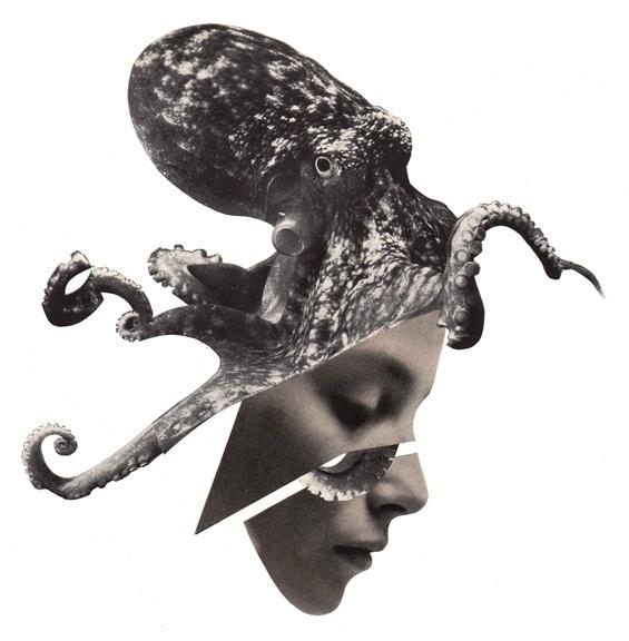 SINGULARITY - Jesse Draxler #jesse #singularity #draxler