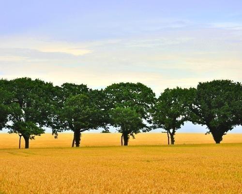Landscape Photography by Christian Estmann | Professional Photography Blog #inspiration #photography #landscape