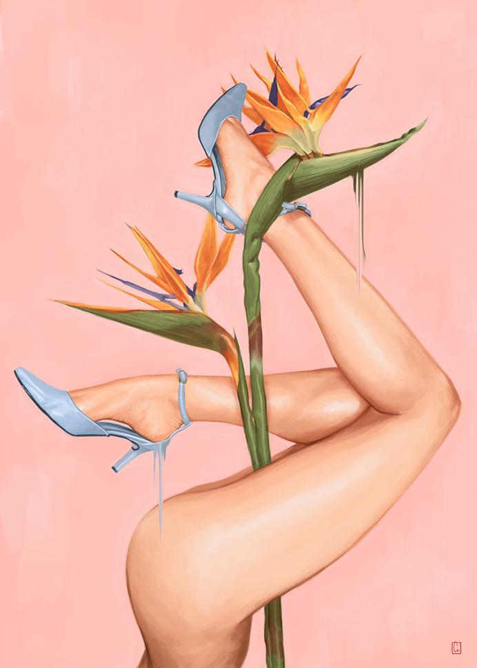 pink plant legs illustration