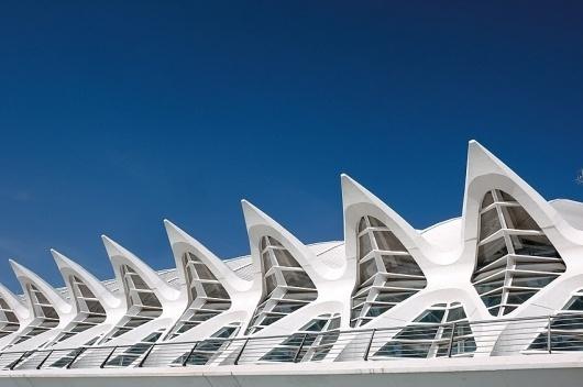 STUA Ciudad de las artes y las ciencias de Valencia #valencia #architecture #calatrava