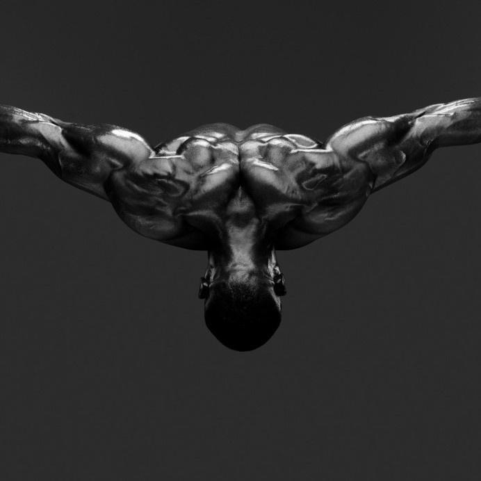 Howard Shatz, Body Power