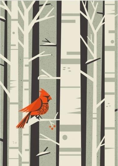 FloraFauna: Winter Wonderland - Design Work Life #illustration #color #bird