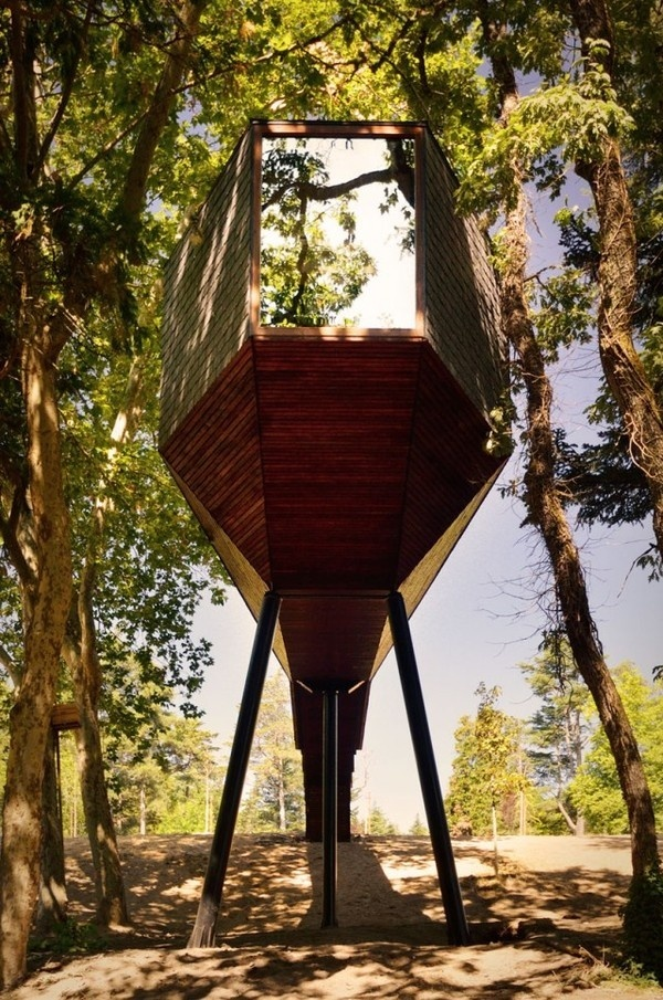 Tree Snake House11 #architecture #house #tree