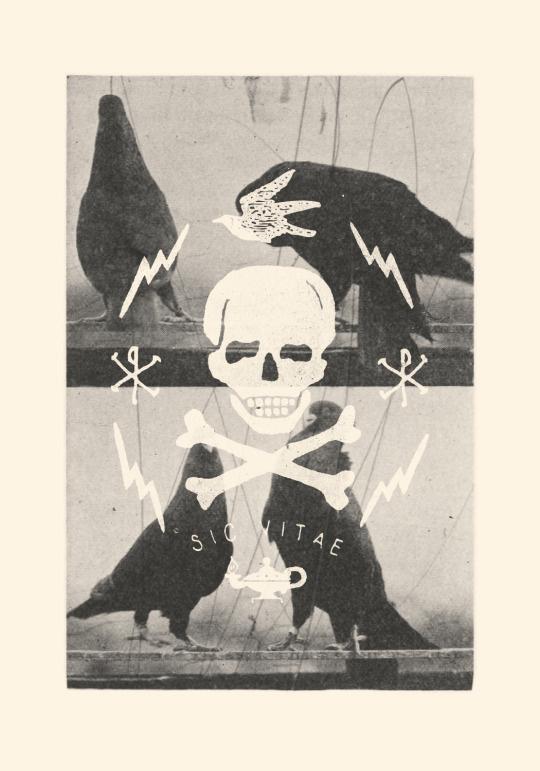 The Ghastling—Book Two, hand drawn, illustration, typography, skull, mixed media, black & white #illustration