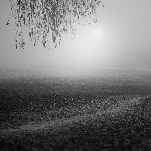 Such A Quick Walk #4, photography by Zoltan Bekefy