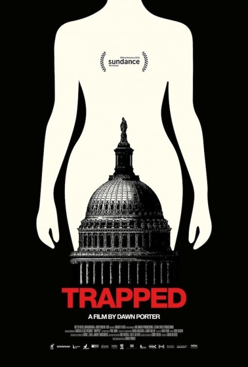 2016 Movie Poster Gallery > Trapped Poster