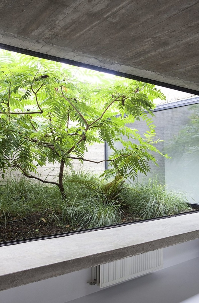 Glass-enclosed garden. House EL by B-bis architecten. © Diane Hendrickx. #garden #bbisarchitecten #dianehendrickx
