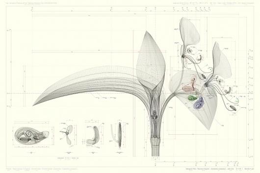 tumblr_lxjyieLMIR1r1w416o1_r3_1280.jpg (JPEG Image, 800×533 pixels) #drawings