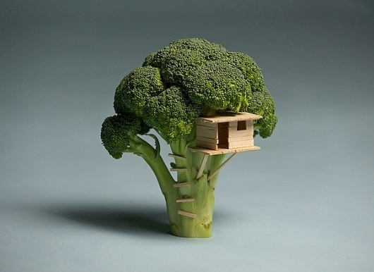 Broccoli Treehouse on the Behance Network #broccoli #miniature #green