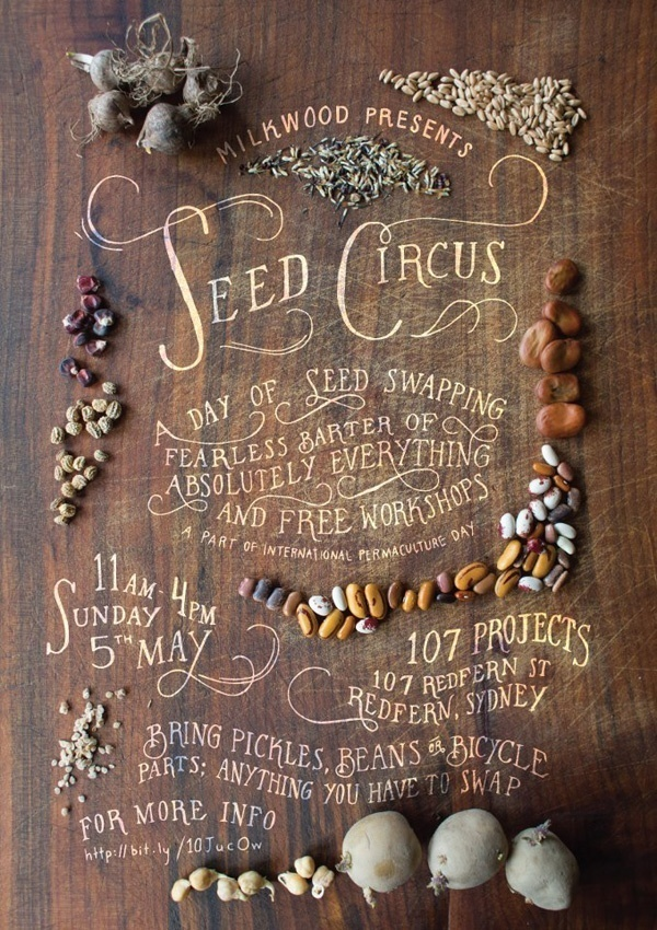 Seed circus typography