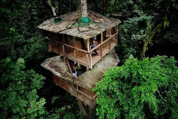 CJWHO ™ (finca bellavista: a sustainable treehouse...) #house #tree #costa #design #landscape #photography #architecture #rica