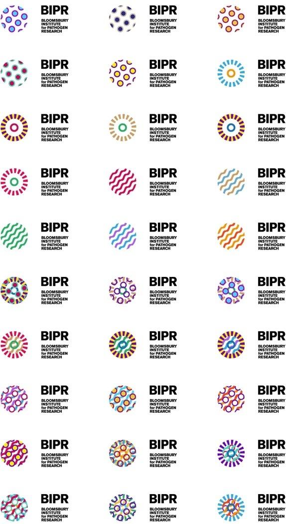 BIPR Logo and Identity #logo #identity #branding