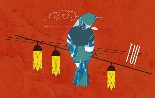 Vinay Ranchhod   Portfolio – Blog #zealand #birds #illustration #tui #new