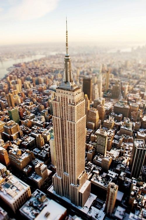 (1) Tumblr #york #new