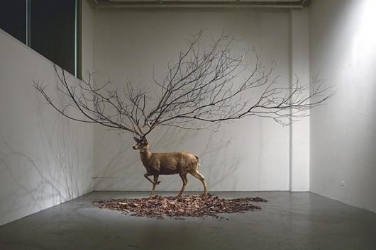 I need a guide: myeongbeom kim #art #installation
