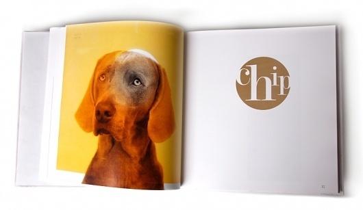 William Wegman | Silvia Mallofre #weimaraner #book #dog
