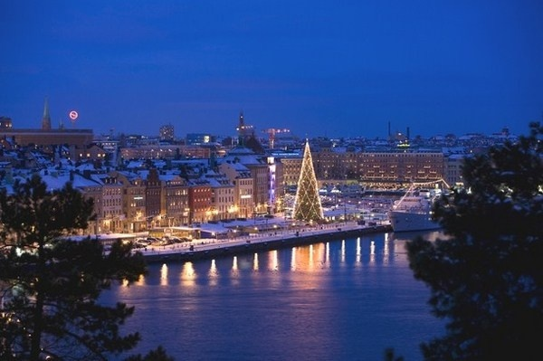 19 Christmas tree in Stockholm Sweden #christmas #trees #art #tree