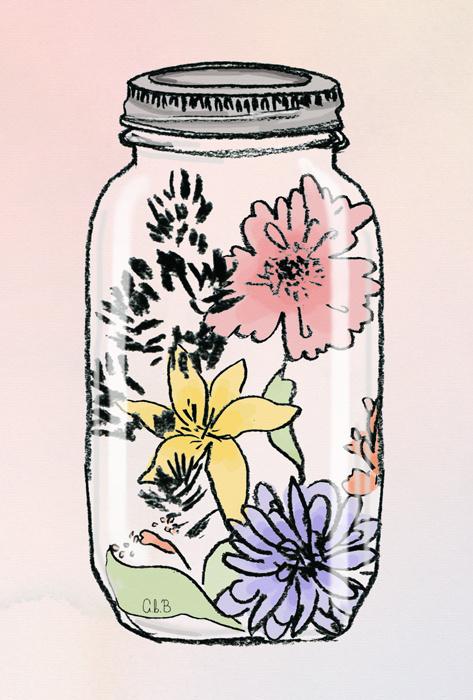 Likes | Tumblr #flower #jar #illustration