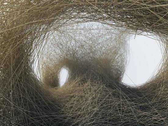 by daniel widrig #straw #dry #nest