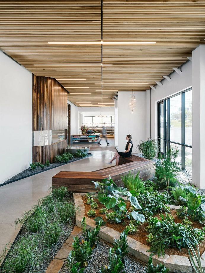Alive + Well Wellness Center, Matt Fajkus Architecture 6