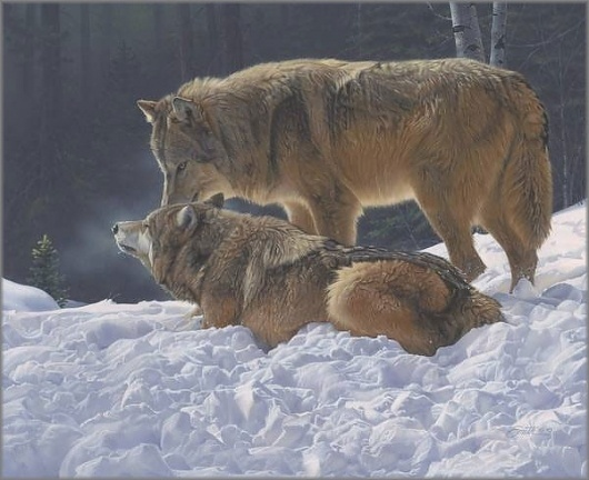 Daniel Smith - Court and Spark: Gallery One - America's Largest Art Gallery #wolves #awesomeness