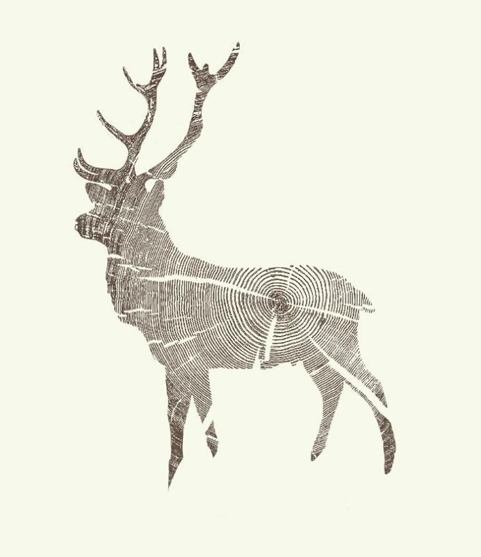 Wood Grain Stag by Kyle Naylor #wood #deer #design