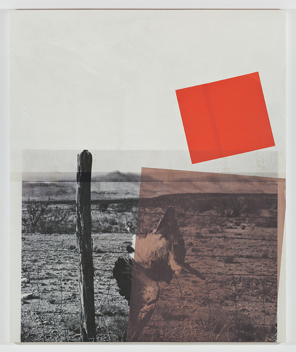 Screen (swainson hawk), acrylic, screen ink, and UV cured print on canvas over panel, 2011, 72 #collage