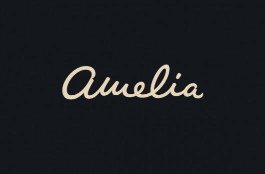 Type Division — Amelia #lettering #identity #custom #logo #typography
