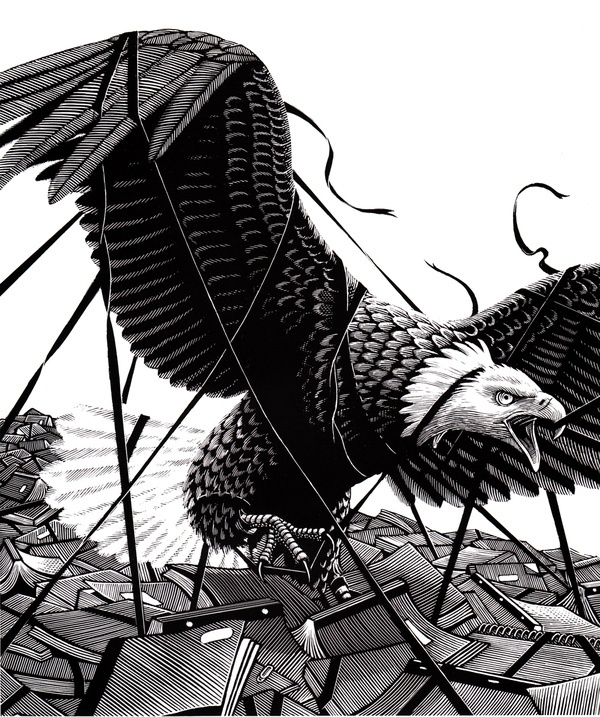 Black and White on the Behance Network #talons #escape #of #books #feathers #bird #illustration #eagle #etching #prey