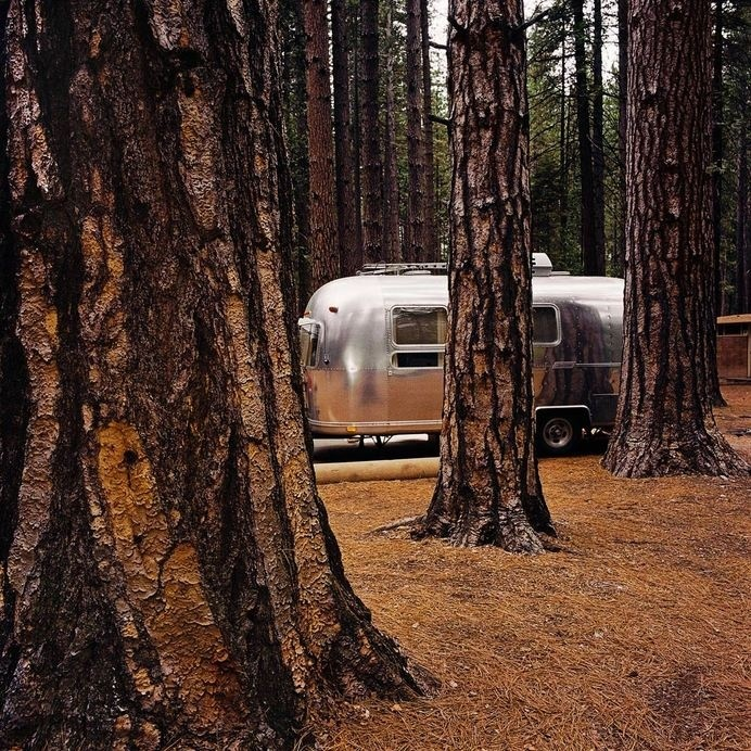 Airstream at Yosemite National Park, CA 1980 #vintage #photography #airstream #trees