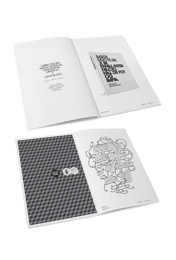 POSTERS III on Behance #type #design #book #clean