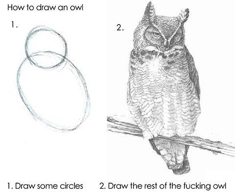 FFFFOUND! #owl