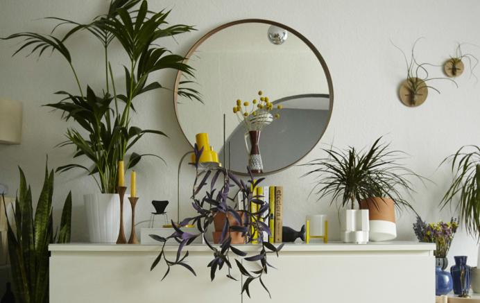 Home furnishing with plants and yellow hints, @ Igor's on www.happyinteriorblog.com