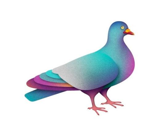 aolartistslaboca.jpg #pigeon #illustration #colors #funky