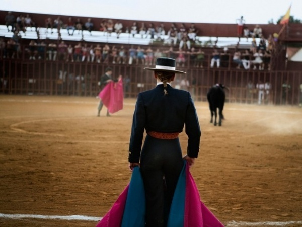 Bull Fight by Gina LeVay #inspiration #photography