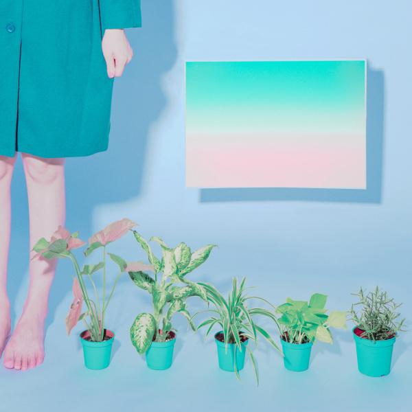Sydney Sie | PICDIT #color #art #photo #photography #artist #design #paper