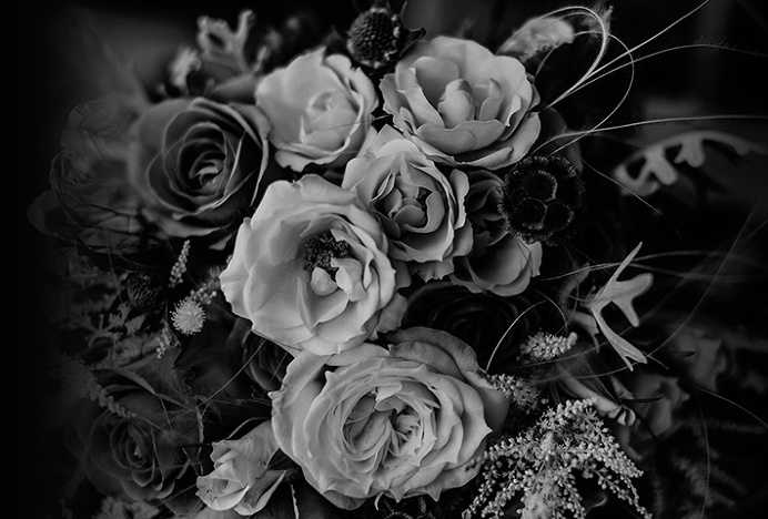 Vega & Vega by Menta . #mark #nature #flowers #blackandwhite #photography