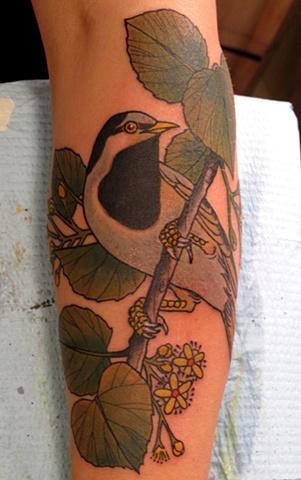 Linden Tree #tattoo