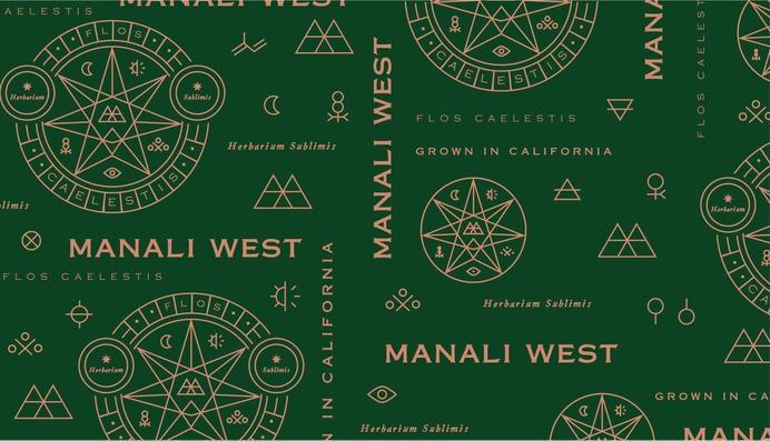 cannabis branding identity logo and pattern
