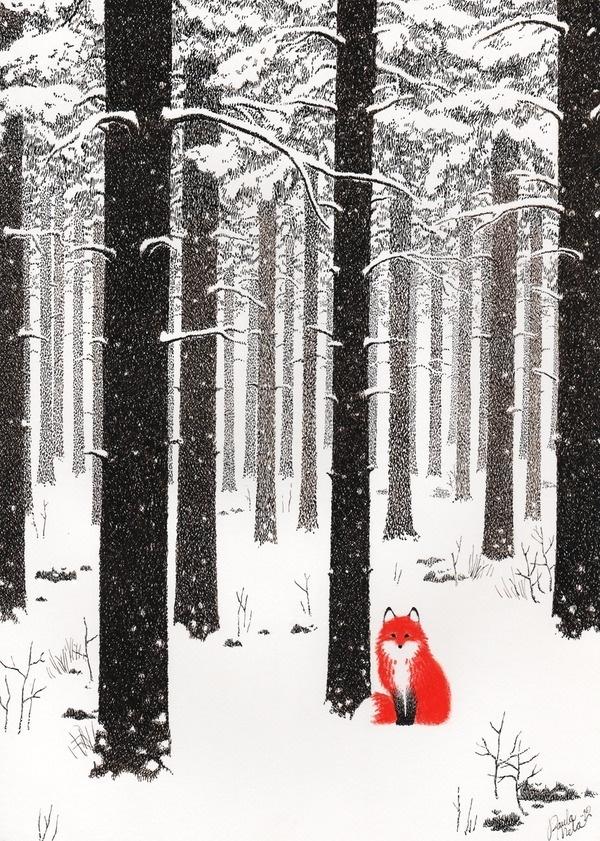 Paula Mela Illustration #fox #woods #orange #snow #contrast #forest #winter