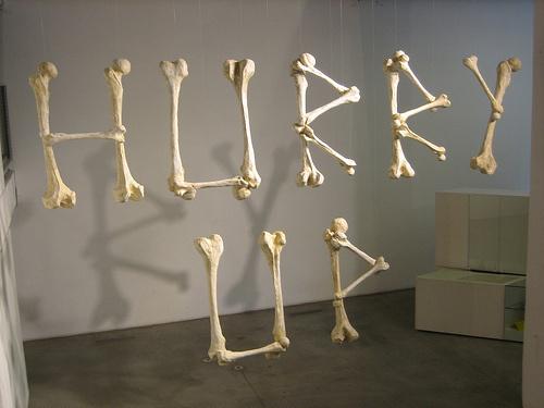 http://farm1.static.flickr.com/149/387418783_796964b116.jpg #display #exhibition #type #bones #typography