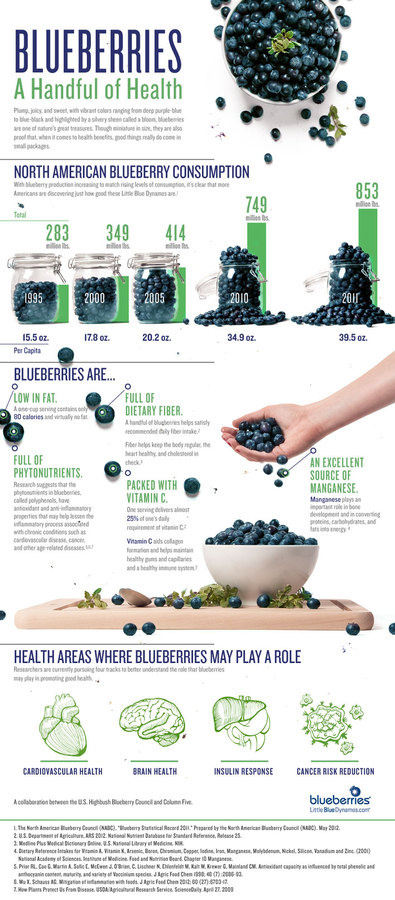Blueberry Infographic: A Handful of Health #infographics #photography #blueberry