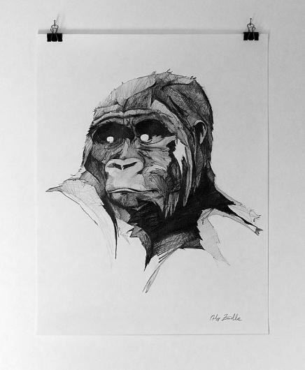 PHILLENNIUM - Philipp Zurmoehle Design Portfolio #illustration #pencil #gorilla #drawing