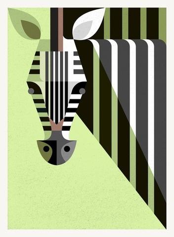 Zebra Portrait #lumaessa #portrait #zebra