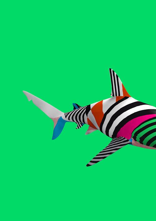 B U I L D #pattern #color #shark